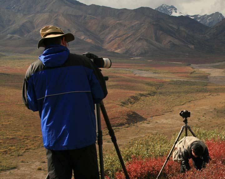 Photographers in Polychrome Pass, Denali National Park, Alaska