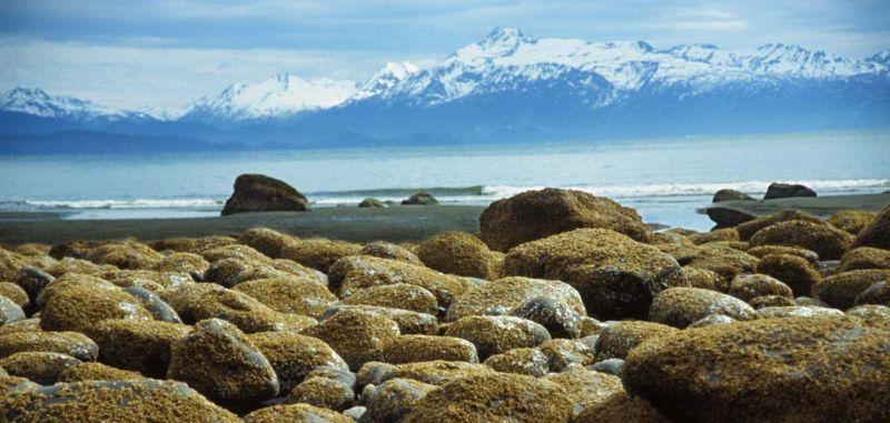 Rocky beach, Homer, Alaska