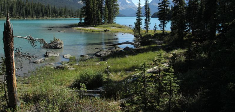 Spirit Island, Maligne Lake, Jasper National Park, AB