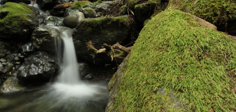 Waterfall in Stratacona Provincial Park, Vancouver Island, BC