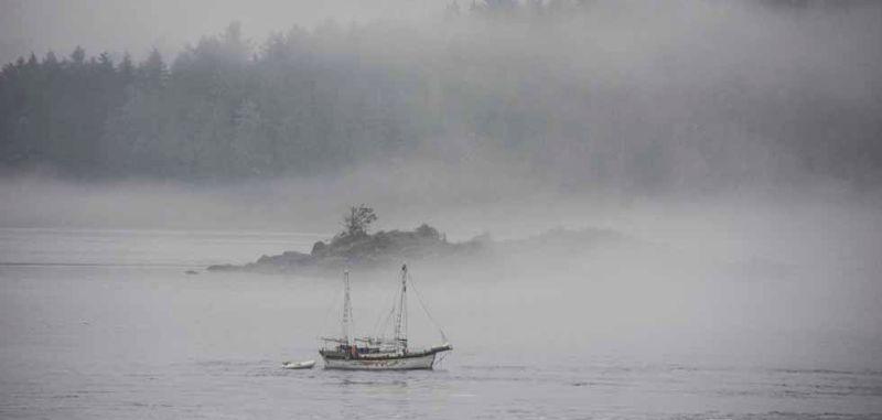 Sailboat in the mist, Tofino, BC