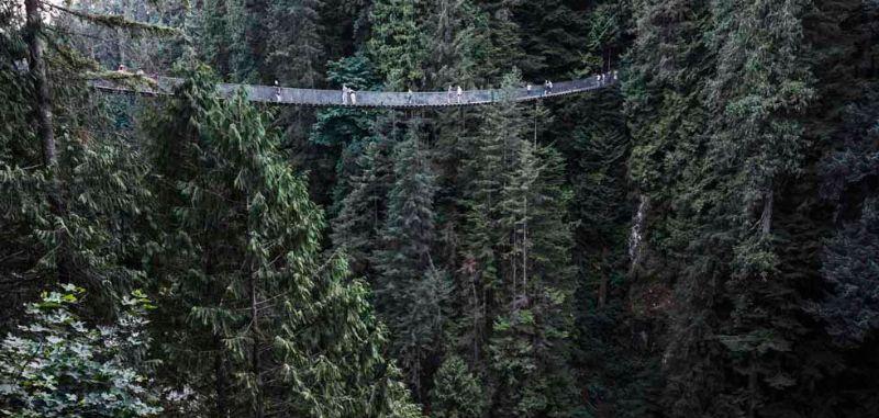 Capilano Suspension Bridge, Vancouver BC
