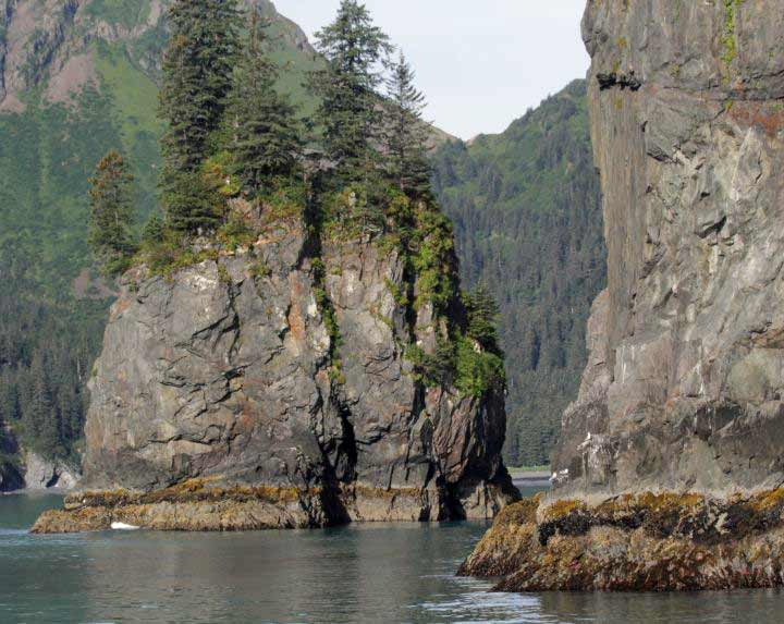 Sea bluffs in Kenai Fjords National Park, Alaska