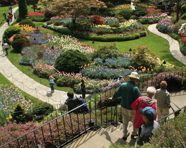 Visitors observing flowers and trails in Butchart Gardens, Victoria, BC