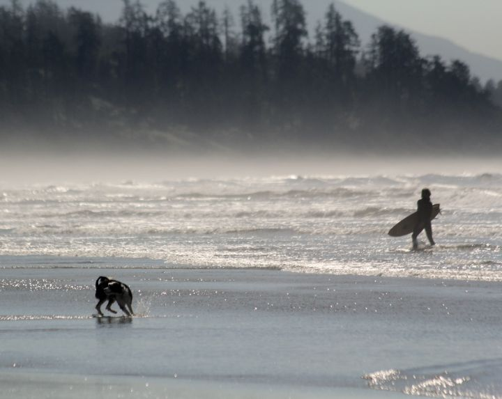 Surfer and a dog on the beach near Tofino, Vancouver Island, BC