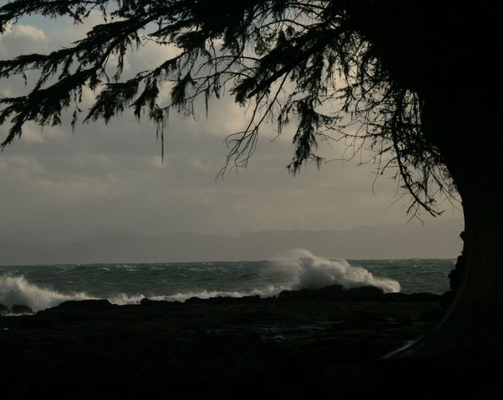 Breaking waves in Pacific Rim National Park, Vancouver Island, BC